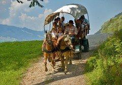 pony-western-tour-in-aich-1-c-tv_haus_aich_goessenberg_bernd_huber